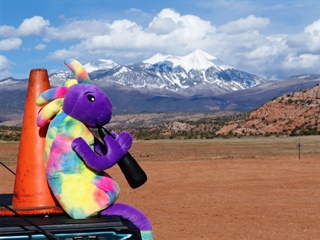 Coney the Traffic Cone and Plush Kokopelli view the Sierra La Sal Range from