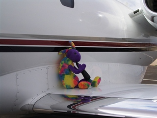 Plush Kokopelli sits on the wing of his private jet, waiting for Coney the Traffic Cone to pick him up at Canyonlands Field, Moab, Utah